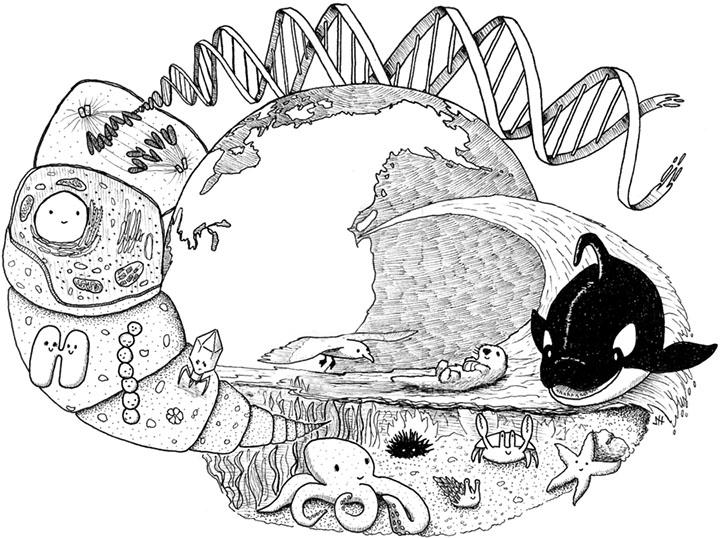 Изображение - Поздравление с днем учителя учителю биологии Biologiya1