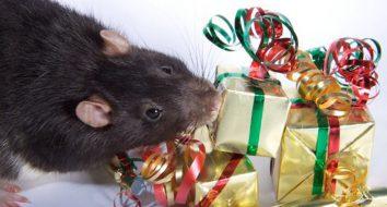 Поздравления с новым годом 2020 крысы